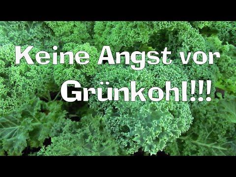 Keine Angst vor Grünkohl! Ernten & zubereiten + Sellerie  Film 66