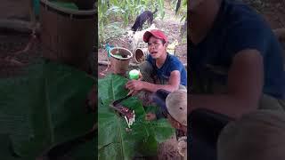 May Thăng khung Ba Dao ___PHIM HAI HUOC Video