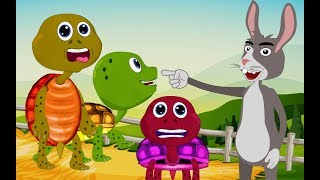 Animation Shot Story Turtle VS Rabbit | Dab Neeg Vaub Kib Thiab Luav Sib Tw