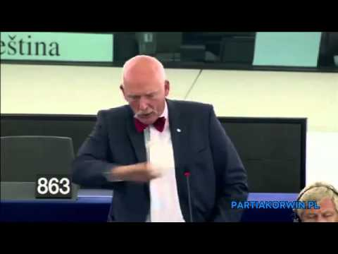 Janusz Korwin Mikke -  Situation of fundamental rights in the EU (2013-2014)