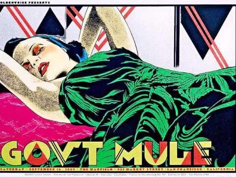 Gov't Mule (Warren Haynes) - Beautifully Broken..