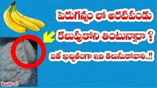 పెరుగన్నంలో అరటిపండు కలుపుకొని తింటున్నారా ? II #Benefits of curd and banana combination in telugu