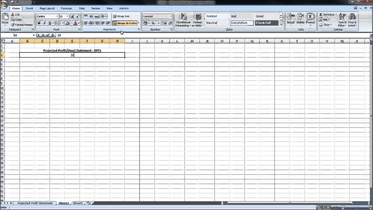 How To Use Excel Profit and Loss Projection Template