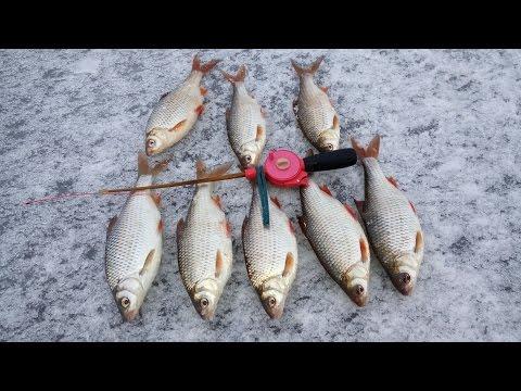 Жор крупной плотвы на водохранилище. Зимняя рыбалка сезон 2017
