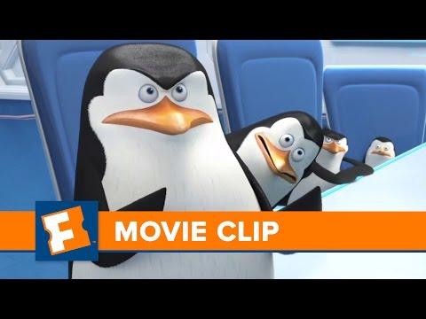 Penguings of Madagascar