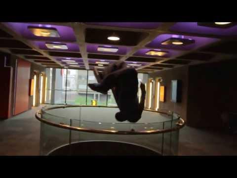 Concrete Circus   C4   UK Storm Origins Premiere)