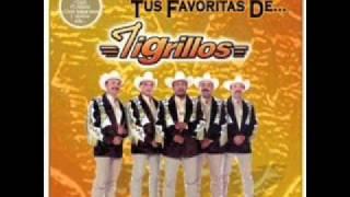 Watch Los Tigrillos Que Linda Es Lupe video