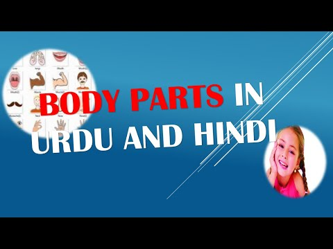 Learn Name of Body Parts in Urdu and Hindi Video 10 of 10