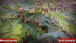 Yawg nraj kua tua phim nyuj vais ntu 03 20/03/2019