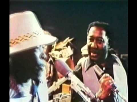 Muddy Waters&John Lee Hooker - I Just Want To Make Love To You (live '78)