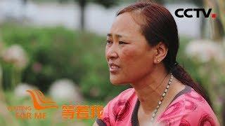 [等着我 第五季] 山歌寄托思乡情 懂事女儿为母寻家 | CCTV