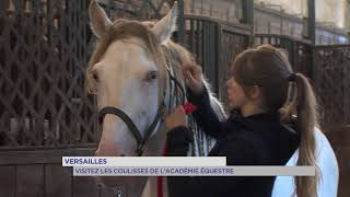 Versailles  Visitez les coulisses de lAcadmie Eque