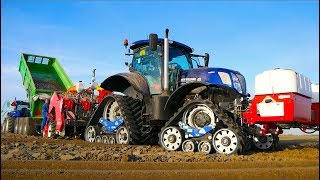 Planting Potatoes | New Holland T7.270 Blue Power on Zuidberg Tracks + Miedema CP42 | Buth Dirksland