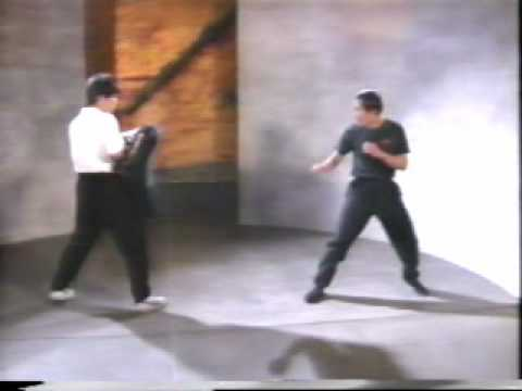 Jeet Kune Do Kick Punch Image 1