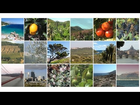 Lands of Two Seasons: The World's Mediterranean-Climate Ecosystems