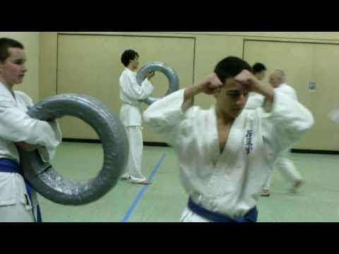 Kyokushin-Kan Karate training Image 1