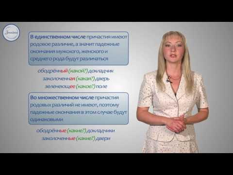 Русский язык 7 класс. Склонение причастия и правописание гласных в падежных окончаний.