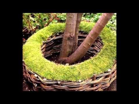 Зеленый мох - оригинальное украшение участка, сада, дачи, двора