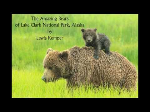 The Amazing Bears of Lake Clark National Park, Alaska