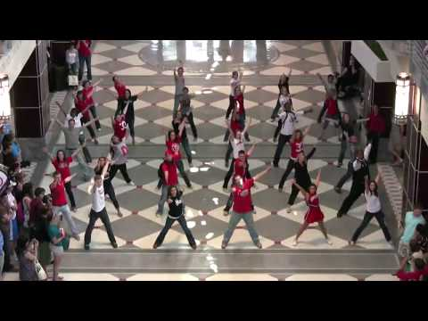 Glee Cast -  Flash Mob video