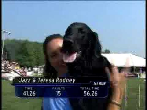 Purina Incredible Dog Agility Challenge