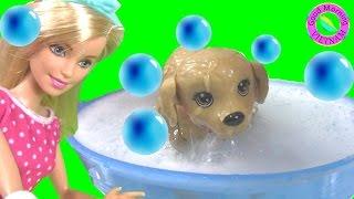 Barbie Anna Tắm Cho Cún Cưng - Đồ Chơi Bồn Tắm Xà Phòng Cho Chó Con Barbie Splish Splash Pup