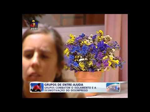 Jornal das 8 na TVI, 13 de novembro de 2012
