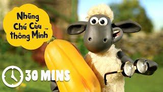 Những Chú Cừu Thông Minh - Tập 1 [30 phút]