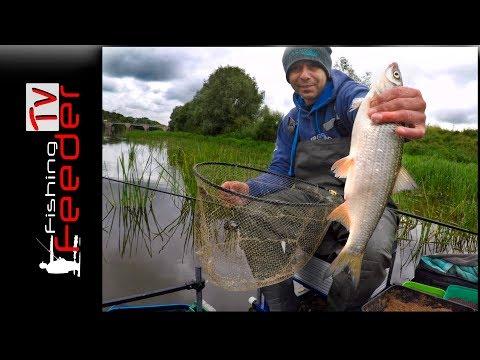 Vlog #14. Рыбалка на фидер. Ловля плотвы и леща на реке осенью 2017.Подуст.