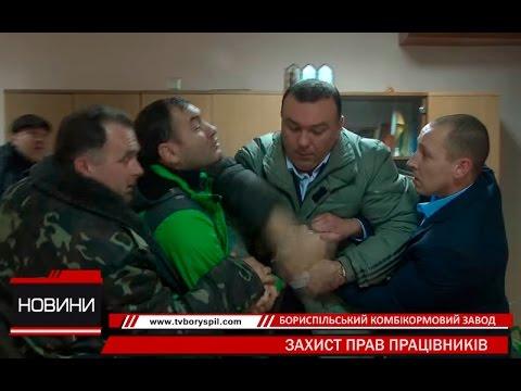 Скандал на Бориспільському експериментальному комбікормовому заводі