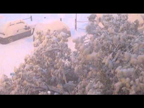 Neve a Firenze - Snow in Florence.wmv
