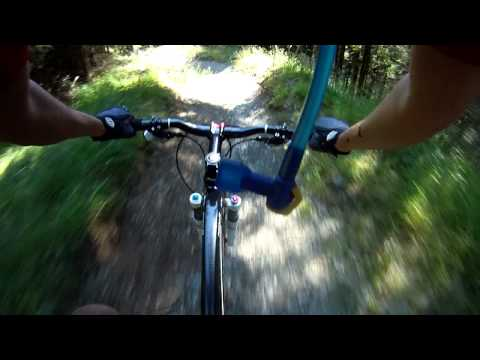 Whinlatter North Loop Red Descent Part 2 (Grandad Wheel) 720p GoPro HD