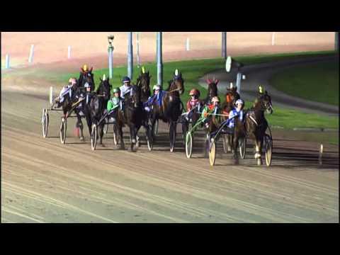 Vidéo de la course PMU PRIX ANJA KOOPS