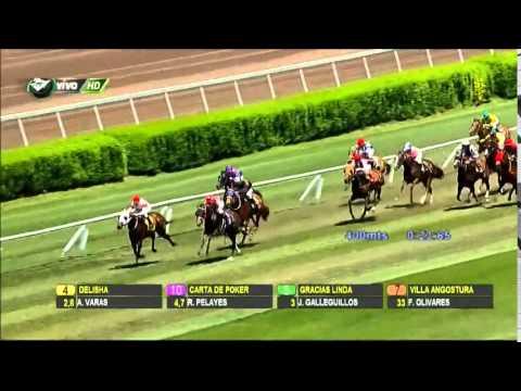 Vidéo de la course PMU PREMIO JADARA