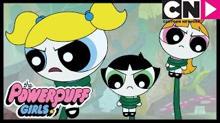 The Powerpuff Girls | Escaping Monster Island | Cartoon Network