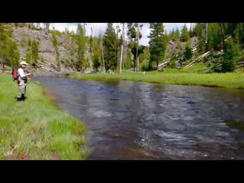 Yellowstone National Park Fly Fishing