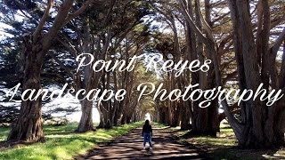Point Reyes  -  Landscape Photography (Film Series ep 6)