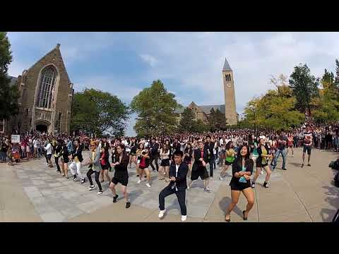 [OFFICIAL] Cornell Gangnam Style Flash Mob Video 강남스타일