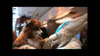 Clockwork Creature walk_eurofurence 18_part 1