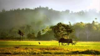 download lagu Tanah Air Ku gratis