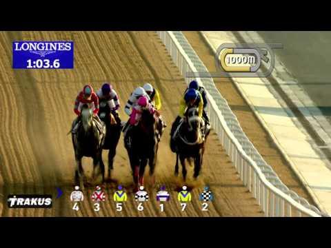 DWC 2016   Race 4   - UAE Derby Sponsored By The Saeed & Mohammed Al Naboodah Group