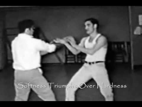 Wing Chun, Ip Man