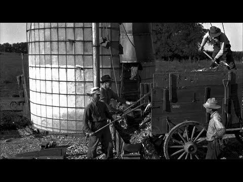 Threshing Machine: Farmers Working Together