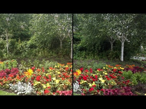 Nokia 808 Pureview vs iPhone 4S Camera Test Comparison.
