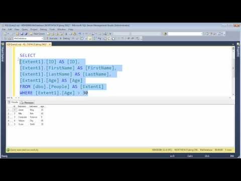 C# Why Expression Trees Are Cool (Entity Framework)