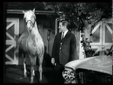 1961 Studebaker Lark - Commercial
