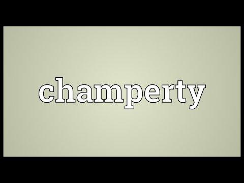 Header of champerty