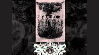 Watch Xasthur Marked By Shadows video