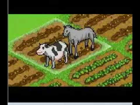 facebook, ( my farm )  horse and cow water sports 1 avi