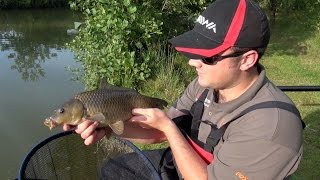 "Pole Fishing For Carp Using Pellet - ""Sloppy Pellet"""